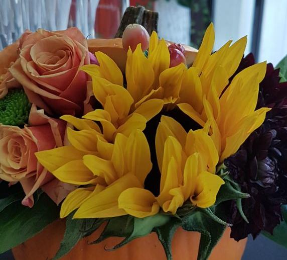 Kwiaty Jelenia Góra